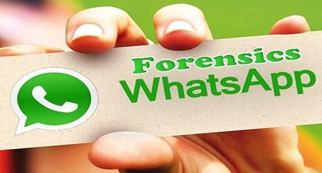 Usi WhatsApp ? Attenzione ! Tutto quello che invii e ricevi diventa legale come una raccomandata con ricevuta di ritorno