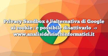 Privacy Sandbox è l'alternativa di Google ai cookie : è possibile disattivarlo